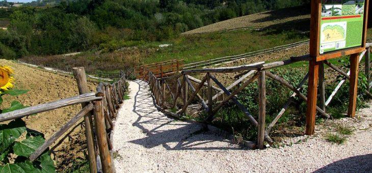 Bando di concorso-Valorizzazione parco dei vulcanelli di fango