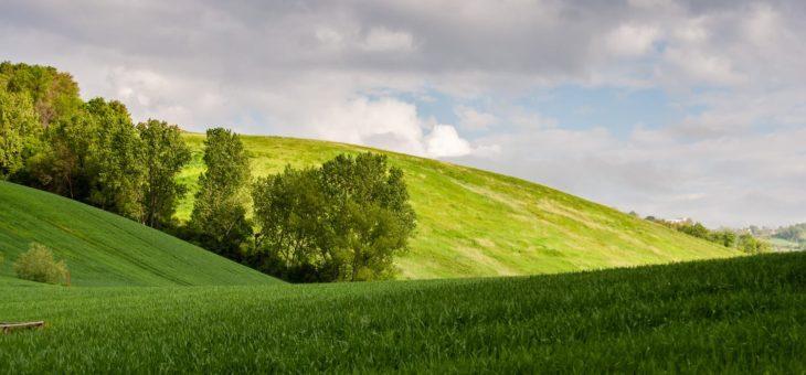 Vivere il borgo: Monteleone di Fermo. Ambiente, cultura, cibo