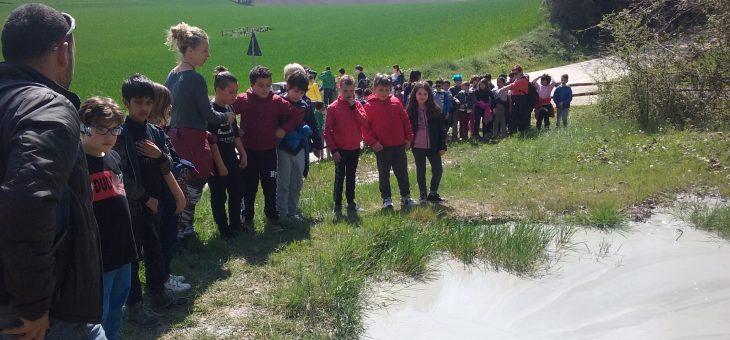 """16/04/2019 – ISC """"Via Piave"""" di Morrovalle in visita ai Vulcanelli"""